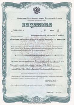 Лицензия на торговлю лекарственными препаратами